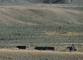 NRCSMT01043 - Montana (4935)(NRCS Photo Gallery).tif