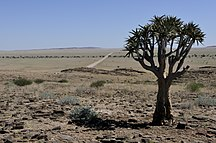 Namibija-Podnebje-Namibia-1113