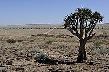 Namibia-Climate-Namibia-1113
