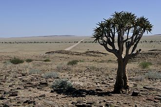 Water supply and sanitation in Namibia - Namibia is primarily a large desert and semi-desert plateau.