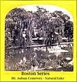 Natural Lake in Mt. Auburn Cemetery in Boston Massachusetts (4705671417).jpg