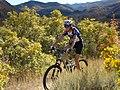 Nebo Loop Scenic Byway - Mountain Biker Speeding along Lower Payson Canyon Trails - NARA - 7720636.jpg