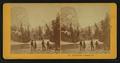 Nevada Falls, Yosemite, Cal., by Kilburn Brothers.png