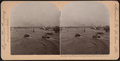 New York Harbor, (bird's-eye view), New York City, U.S.A, from Robert N. Dennis collection of stereoscopic views.png