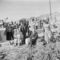 Nieuw aangekomen emigranten (oliem) in het doorgangskamp St. Lucas bij Haifa bi…, Bestanddeelnr 255-1164.jpg