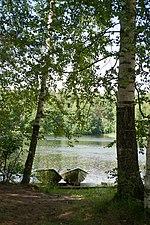 Niinivesi Wikipedia