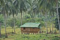 Nipa Hut taken at Magdalena Laguna Philippines on 2011 April photo 1.jpg
