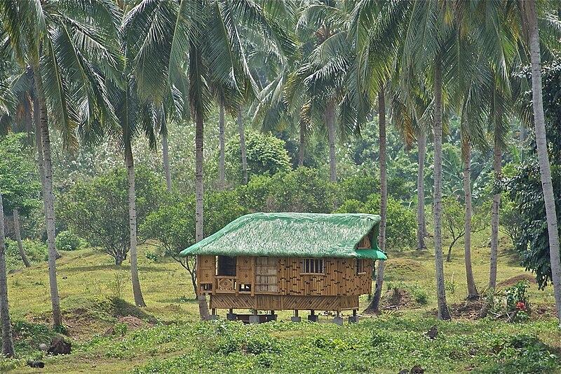 File:Nipa Hut taken at Magdalena Laguna Philippines on ...