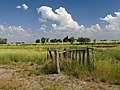 Nogoyá, Entre Ríos, Argentina - panoramio (216).jpg