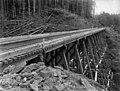Northern Pacific Railway trestle, Washington, ca 1887 (WASTATE 2406).jpeg