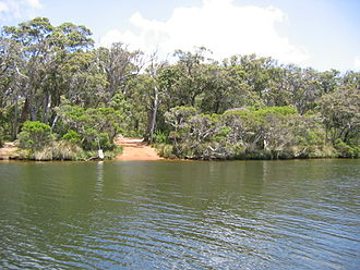 Hardy Inlet - View of Blackwood River bank on the Hardy Inlet