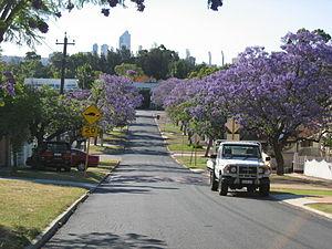 Burswood, Western Australia - Jacaranda-lined Howick Street, with CBD in background