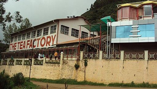 Ooty tea factory