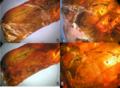 Ordralfabetix sirophatanis holotype.png
