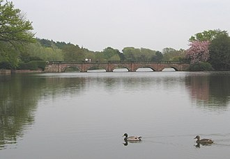 Capesthorne Hall - Lake with the bridge