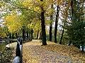 Otoño en El Parque (Guardo) - panoramio.jpg