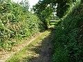 Overgrown track - geograph.org.uk - 552656.jpg