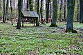 Paśnik - panoramio (1).jpg