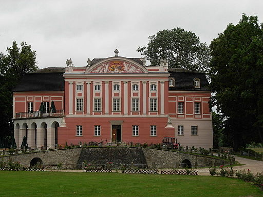 Palace in Kurozweki - 02