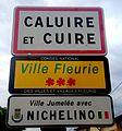 Panneau d'entrée dans Caluire-et-Cuire.JPG