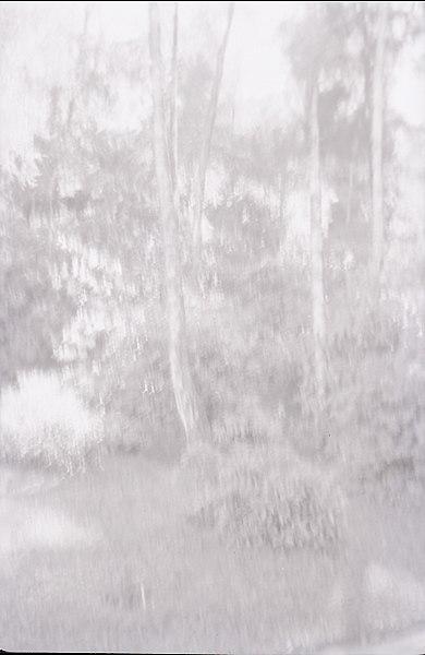 File:Paolo Monti - Serie fotografica - BEIC 6337100.jpg