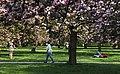 Parc de Sceaux 2013 003.jpg