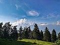 Parco naturale Orsiera Rocciavrè1.jpg