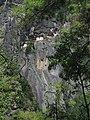 Paro Taktsang, Taktsang Palphug Monastery, Tiger's Nest -views from the trekking path- during LGFC - Bhutan 2019 (299).jpg