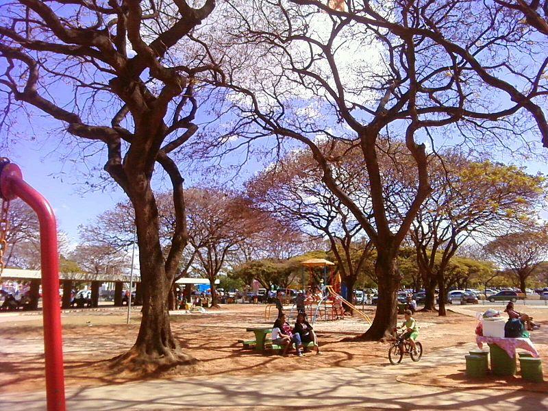 Parque da Cidade - Brasilia - DF. Reprodução/Autor: LeaLTudo
