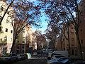 Passeig de la Peira P1520588.jpg