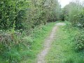 Path on old railway track - geograph.org.uk - 798989.jpg