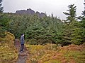 Path to The Storr - geograph.org.uk - 1200286.jpg