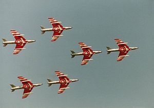 Patrouille Suisse - The team flying Hawker Hunters in 1991