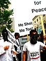 Penguins for Peace.jpg