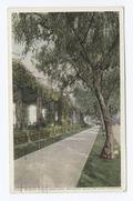 Pergola, Hotel Maryland, Pasadena, Calif (NYPL b12647398-74114).tiff