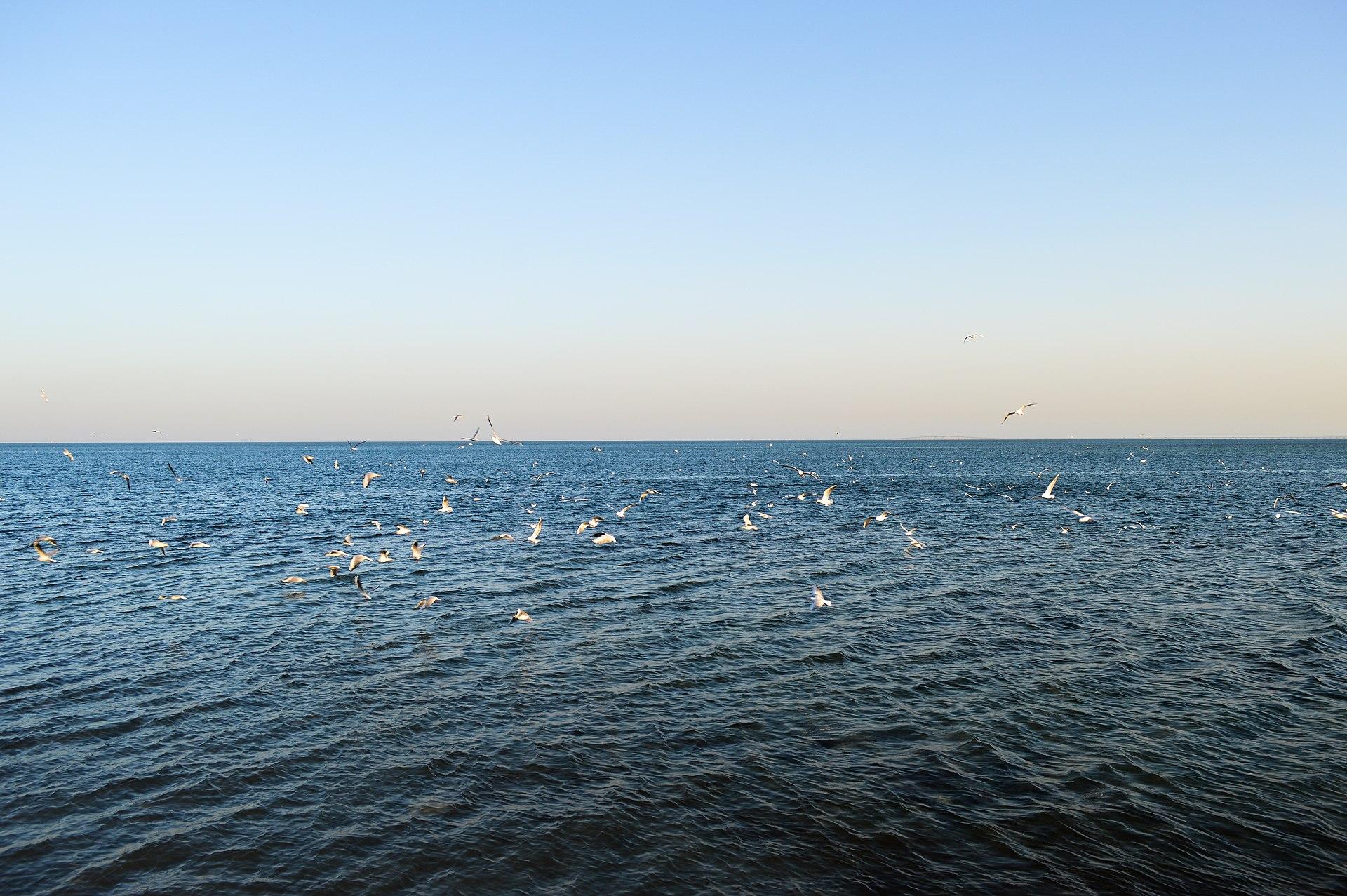 Con vista al mar - 3 9