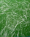 Peter Eastman, Green Riverbank, oil on aluminum, 164x132cm.jpg