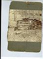 Photograph of Log Cabin - NARA - 7829548.jpg