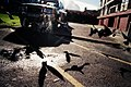 Pigeon extravanganza (277243694).jpg
