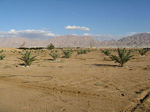 Arabah - Arava landscape