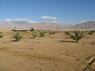 area south of the Dead Sea basin in Israel and Jordan