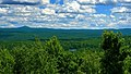 Pine Hill (Revisited) (2) (9449538588).jpg