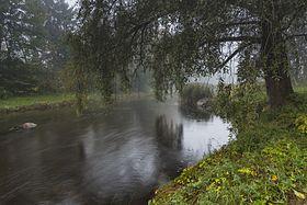 Pirita jõgi. 02.jpg