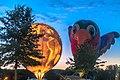 Planet Earth And Jewel The Hummingbird (20910280365).jpg