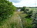 Pocklington Canal at Coates Bridge Lock - geograph.org.uk - 180057.jpg