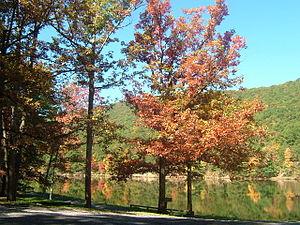 Penn Township, Centre County, Pennsylvania - Poe Valley State Park in Penn Township