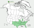 Polygonella americana US-dist-map.png