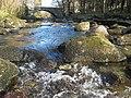Pont Dôl - gefeiliau. - geograph.org.uk - 391394.jpg