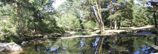 A small, natural pool of the Eresma river