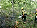 Prescribed fire, September 2006 (5927088129).jpg